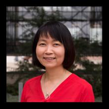 Xiaoqin (Elaine) Li