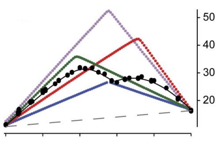 Figure 4H