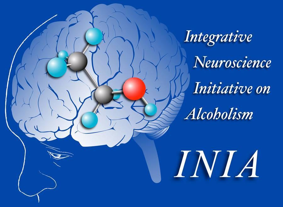 INIA-N Logo