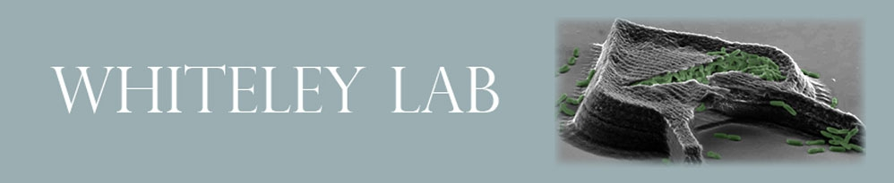 The Whiteley Lab