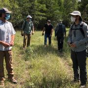 Stengl Lost Pines
