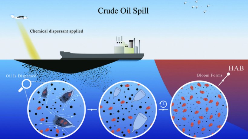 Crude Oil Spill
