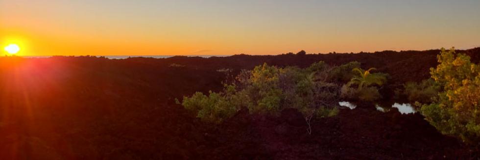 KIKI sunset