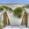 Natural Designs for Resiliency - Upcoming Workshop August 2, 2016
