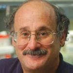 Alan Lambowitz
